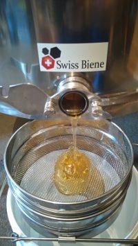 Co je to med? Co obsahuje?